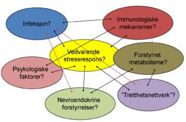 Kanskje er det ikke bare en årsak til CFS/ME, men et konglomerat av ulike faktorer som påvirker og forsterker hverandre.